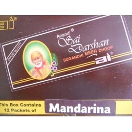 Sai Darshan Anand