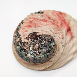 Portaincienso concha abalon natural 16/18 cms