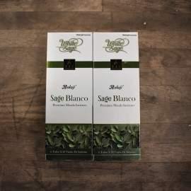 Salvia Blanca Balaji